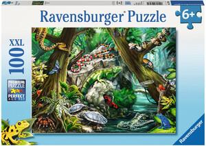 Ravensburger Casse-tête 100 XXL bestioles, serpent, tortue, grenouille 4005556107032