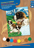 Sequin Peinture à numéro Peinture à numéro junior chiens St-Bernards 5013634011095