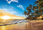 Clementoni Casse-tête 1500 Lever de soleil tropical 8005125316816