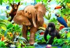 Ravensburger Casse-tête plancher 24 bébés animaux de la jungle 4005556053476