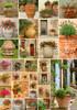 Piatnik Casse-tête 1000 Pots de fleurs 9001890545542