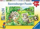 Ravensburger Casse-tête 24x2 Mignons koalas et pandas 4005556078202