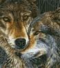 Diamond Dotz Broderie diamant Loups museau à museau (Muzzle Nuzzle) Diamond Dotz (Diamond Painting, peinture diamant) 4897073244303