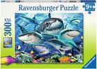 Ravensburger Casse-tête 300 XXL Bande de requins 4005556132256