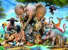 Ravensburger Casse-tête 300 amis africain 4005556130757