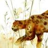Maxou & Bizou Carte fête - Jules le jaguar 754083370214