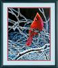 """Dimensions PaintWorks Peinture à numéro Cardinal et branches glacées 11x14"""" 91432 088677914325"""