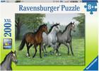 Ravensburger Casse-tête 200 XXL Chevaux sauvages 4005556126323