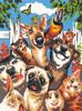 """Dimensions PaintWorks Peinture à numéro Animaux de compagnie égoportrait 9x12"""" 91679 088677916794"""