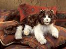 Folkmanis Marionnette Chat 638348025586