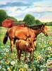Royal & Langnickel Peinture à numéro junior chevaux dans le pré 22.5x29.5cm 090672943330
