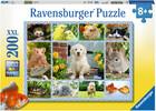 Ravensburger Casse-tête 200 XXL mon premier animal de compagnie 4005556128105
