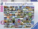 Ravensburger Casse-tête 1000 99 belles places 4005556193714