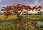 Heye Casse-tête 1000 Andy Thomas - Arbre de strontium (Strontium Tree) 4001689299095