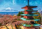 Trefl Casse-tête 1500 Mont Fuji, Japon 5900511261325