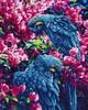 Diamond Dotz Broderie diamant Perroquets bleus (Blue Parrots) Diamond Dotz (Diamond Painting, peinture diamant) 4897073240893