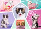 Trefl Casse-tête 200 farces feline 5900511132472