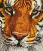 Diamond Dotz Broderie diamant Tigre du Bengale (Bengal Magic) Diamond Dotz (Diamond Painting, peinture diamant) 4897073249407