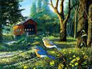 SunsOut Casse-tête 1000 Sleepy Hollow Bluebirds 71108 796780711082