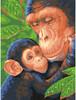 """Dimensions PaintWorks Peinture à numéro Chimpanzé et son bébé 9x12"""" 91470 088677914707"""
