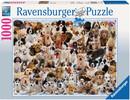 Ravensburger Casse-tête 1000 Portraits de chiens 4005556156337