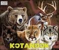 Asio Games Kotanook (fr/en) 627843252184